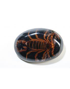 AZ1 Sendra Gürtelschnalle  Scorpion Negro