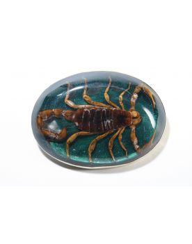 AZ1 Sendra Gürtelschnalle  Scorpion Grün